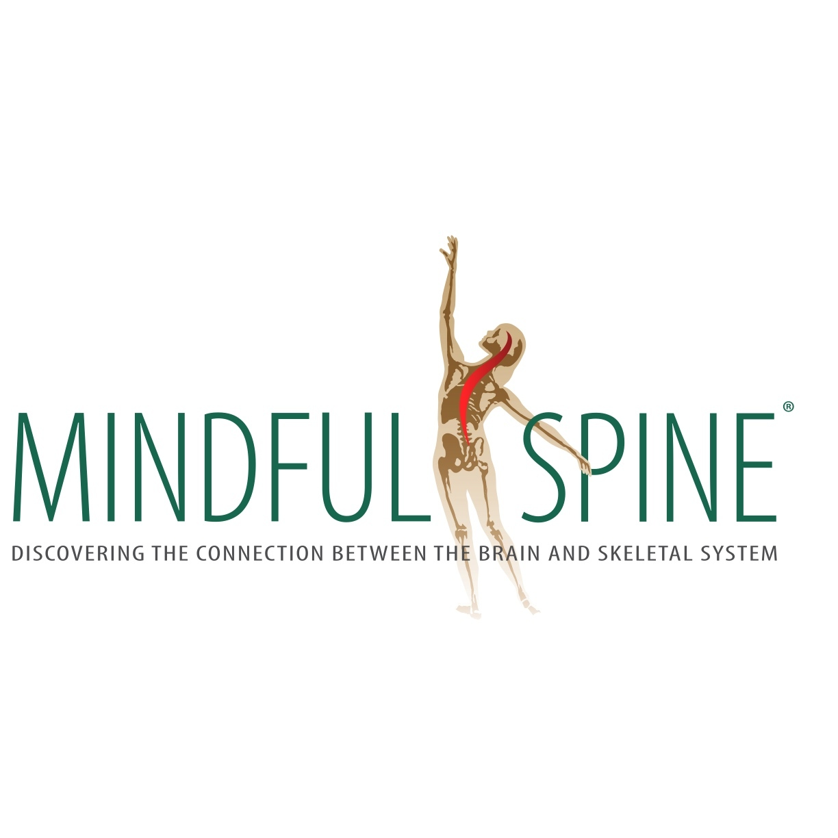 Mindful Spine
